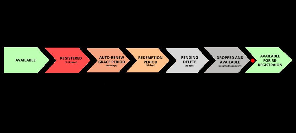 gTLD Domain Life Cycle