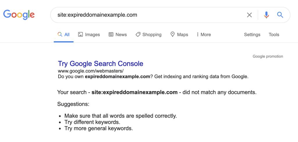 Google Deindexed Expired Domain